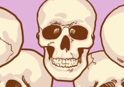 Skulls feature image